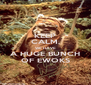 KEEP CALM, WE HAVE A HUGE BUNCH OF EWOKS - Personalised Poster A4 size