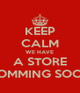 KEEP CALM WE HAVE  A STORE  COMMING SOON - Personalised Poster A4 size