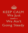 KEEP CALM  We Just Cooling It We Ain't Going Steady  - Personalised Poster A4 size
