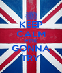 KEEP CALM WE'RE GONNA TRY - Personalised Poster A4 size