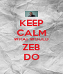 KEEP CALM WHAT WOULD ZEB DO - Personalised Poster A4 size