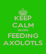 KEEP CALM WHEN FEEDING AXOLOTLS - Personalised Poster A4 size