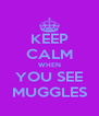 KEEP CALM WHEN YOU SEE MUGGLES - Personalised Poster A4 size