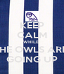 KEEP CALM WHILE  THE OWLS ARE  GOING UP - Personalised Poster A4 size