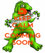 KEEP CALM W.H.S.S. FAIR COMMING SOON - Personalised Poster A4 size