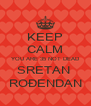 KEEP CALM YOU ARE 35 NOT DEAD SRETAN  ROĐENDAN - Personalised Poster A4 size