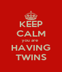 KEEP CALM you are  HAVING TWINS - Personalised Poster A4 size