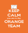 KEEP CALM you are in the ORANGE TEAM - Personalised Poster A4 size