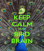 KEEP CALM YOU BIRD BRAIN - Personalised Poster A4 size