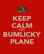 KEEP CALM YOU BUMLICKY PLANE - Personalised Poster A4 size