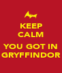 KEEP CALM  YOU GOT IN GRYFFINDOR - Personalised Poster A4 size