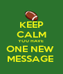 KEEP CALM YOU HAVE  ONE NEW  MESSAGE  - Personalised Poster A4 size