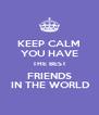 KEEP CALM YOU HAVE THE BEST FRIENDS  IN THE WORLD - Personalised Poster A4 size