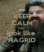KEEP CALM you  look like  HAGRID - Personalised Poster A4 size