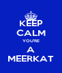 KEEP CALM YOU'RE A MEERKAT - Personalised Poster A4 size