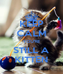KEEP CALM YOU'RE STILL A KITTEN - Personalised Poster A4 size