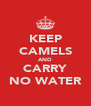 KEEP CAMELS AND CARRY NO WATER - Personalised Poster A4 size
