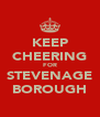 KEEP CHEERING FOR STEVENAGE BOROUGH - Personalised Poster A4 size