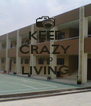 KEEP CRAZY AND LIVING  - Personalised Poster A4 size