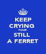 KEEP CRYING  YOUR STILL  A FERRET - Personalised Poster A4 size
