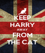 KEEP HARRY AWAY FROM THE CAT - Personalised Poster A4 size