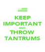 KEEP IMPORTANT AND THROW TANTRUMS - Personalised Poster A4 size