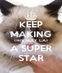 KEEP MAKING THIS SEXY CAT A SUPER STAR - Personalised Poster A4 size