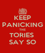 KEEP PANICKING THE TORIES  SAY SO - Personalised Poster A4 size