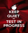 KEEP QUIET  AS TEST IN PROGRESS - Personalised Poster A4 size