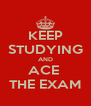 KEEP STUDYING AND ACE  THE EXAM - Personalised Poster A4 size