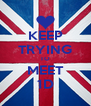 KEEP TRYING TO MEET 1D - Personalised Poster A4 size