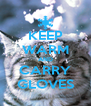 KEEP WARM AND CARRY GLOVES - Personalised Poster A4 size