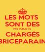 LES MOTS  SONT DES PISTOLETS CHARGÉS BRICEPARAIN - Personalised Poster A4 size