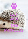 LET AOI BE THE PRINCESS - Personalised Poster A4 size