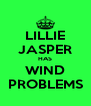 LILLIE JASPER HAS WIND PROBLEMS - Personalised Poster A4 size