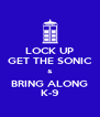 LOCK UP GET THE SONIC & BRING ALONG K-9 - Personalised Poster A4 size