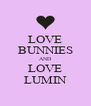 LOVE BUNNIES AND LOVE LUMIN - Personalised Poster A4 size