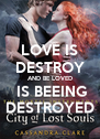 LOVE IS DESTROY AND BE LOVED  IS BEEING DESTROYED - Personalised Poster A4 size