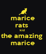 marice rats  kid  the amazing  marice - Personalised Poster A4 size