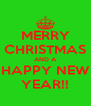 MERRY CHRISTMAS AND A HAPPY NEW YEAR!! - Personalised Poster A4 size