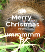 Merry  Christmas From ummmmm ? - Personalised Poster A4 size