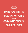 MR WEE'S PARTYING COS CAMERON SAID SO - Personalised Poster A4 size