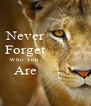 Never           Forget           Who You                      Are            - Personalised Poster A4 size