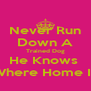 Never Run Down A Trained Dog He Knows  Where Home Is - Personalised Poster A4 size