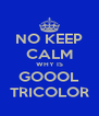 NO KEEP CALM WHY IS GOOOL TRICOLOR - Personalised Poster A4 size