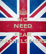 NO NEED TO FEAR DANIELS HERE - Personalised Poster A4 size