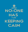 NO-ONE HAS  FUN KEEPING CAlM - Personalised Poster A4 size