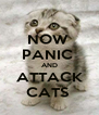 NOW  PANIC  AND ATTACK CATS  - Personalised Poster A4 size