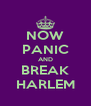 NOW PANIC AND BREAK HARLEM - Personalised Poster A4 size
