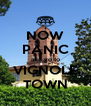 NOW PANIC and go to VIGNOLE TOWN - Personalised Poster A4 size